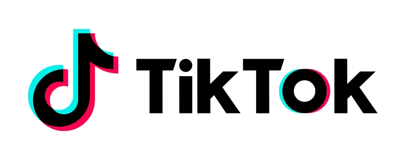 """TikTok selected as one of Google Play's best apps of 2018 in the """"most entertaining"""" category in India."""